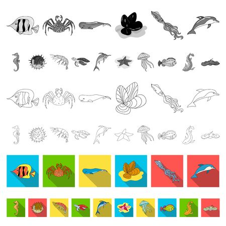 A variety of marine animals flat icons in set collection for design. Fish and shellfish vector symbol stock  illustration.