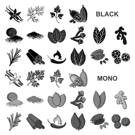 Herb and spices black icons in set collection for design.Different kinds of seasonings vector symbol stock web illustration.