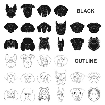 Dog breeds black icons in set collection for design.Muzzle of a dog vector symbol stock web illustration.