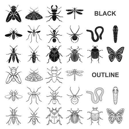 Diferentes tipos de insectos iconos negros en conjunto para el diseño. Ilustración de stock de insectos artrópodos vector símbolo. Ilustración de vector