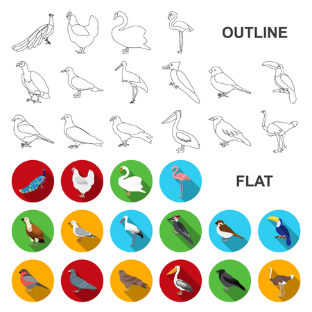 Arten von Vögeln flache Symbole in der Set-Sammlung für Design. Heim- und Wildvogelvektorsymbol stock web illustration.