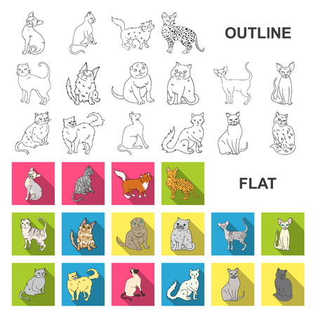 Breeds of cats flat icons in set collection for design. Pet cat vector symbol stock web illustration. Stock Illustratie