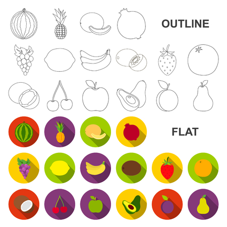Different fruits flat icons in set collection for design. Fruits and vitamins vector symbol stock web illustration.
