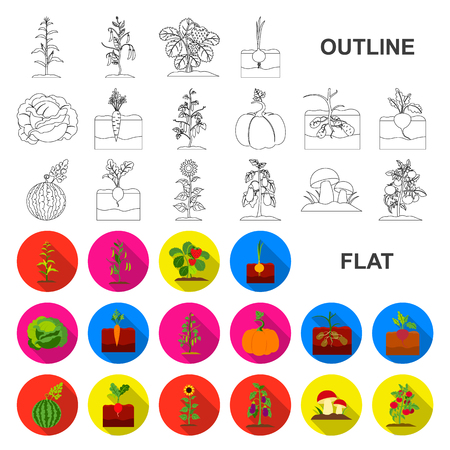 Plant, vegetable flat icons in set collection for design. Garden and harvest vector symbol stock web illustration. Stock Illustratie