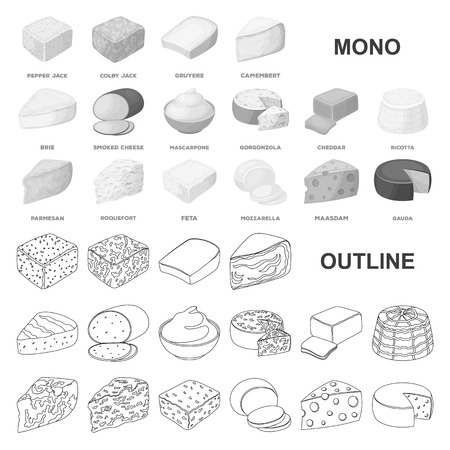 Different kind of cheese monochrom icons in set collection for design.Milk product cheese vector symbol stock  illustration.