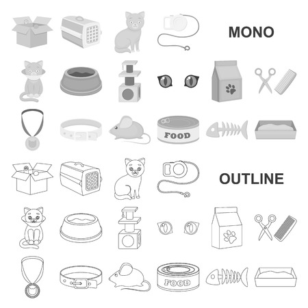 An animal cat monochrom icons in set collection for design. Caring for a cat vector symbol stock  illustration.