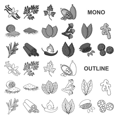 Herb and spices monochrom icons in set collection for design.Different kinds of seasonings vector symbol stock  illustration.