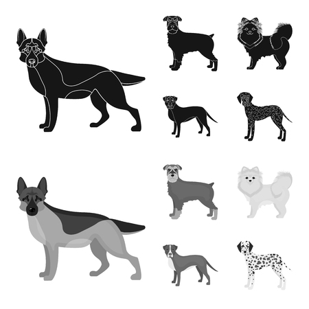 Dog breeds black,monochrom icons in set collection for design.Dog pet bitmap symbol stock web illustration.
