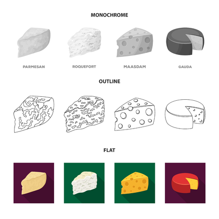 Parmesan, roquefort, maasdam, gauda.Different types of cheese set collection icons in flat,outline,monochrome style bitmap symbol stock illustration web.