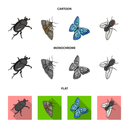 Arthropods insect beetle, moth, butterfly, fly. Insects set collection icons in cartoon,flat,monochrome style bitmap symbol stock isometric illustration web. 스톡 콘텐츠