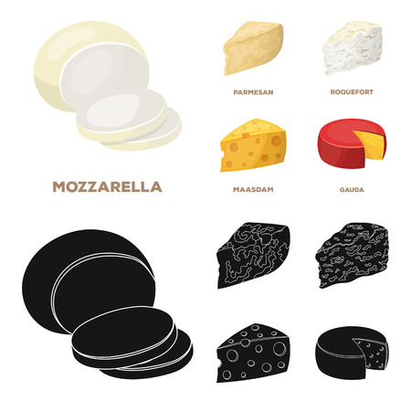 Parmesan, roquefort, maasdam, gauda.Different types of cheese set collection icons in cartoon,black style bitmap symbol stock illustration web. Stock Photo