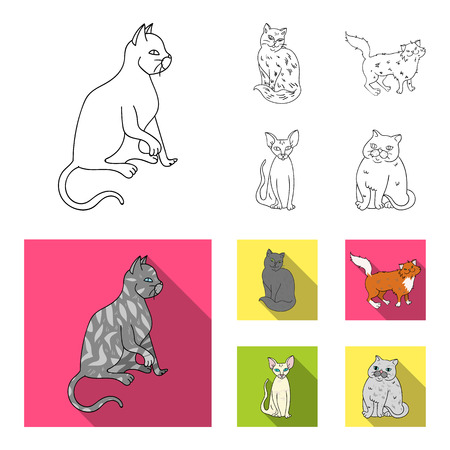 Sphinx, nibelung,norwegian forest cat and other species. Cat breeds set collection icons in outline,flat style bitmap symbol stock illustration web.