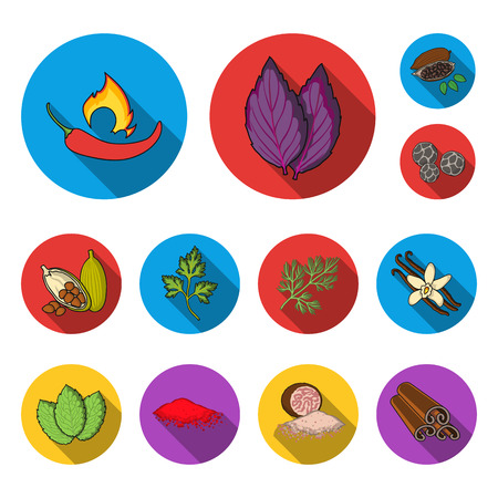 Herb and spices flat icons in set collection for design.Different kinds of seasonings bitmap symbol stock web illustration.