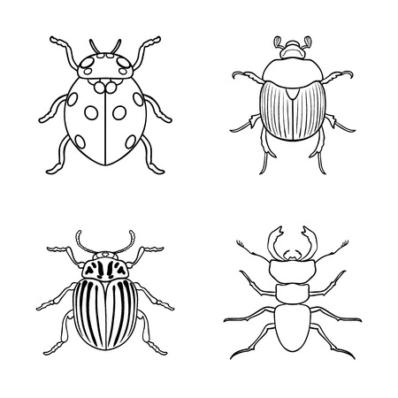 Vector illustration of insect. Collection of insect and halloween stock symbol for web. Vettoriali