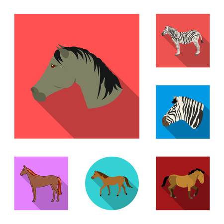 Isolated object of trot and running logo. Set of trot and clipart vector icon for stock.