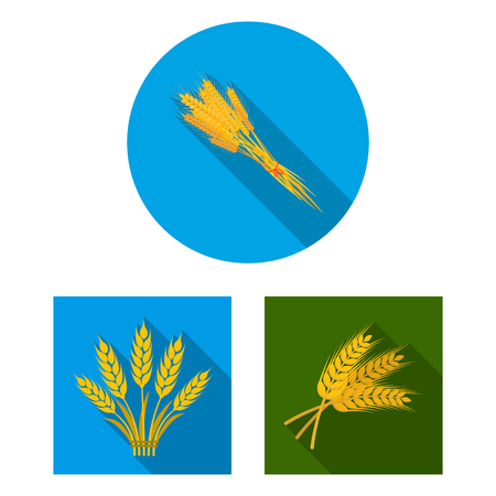 Vector illustration of wheat and stalk icon. Set of wheat and grain stock vector illustration. 向量圖像