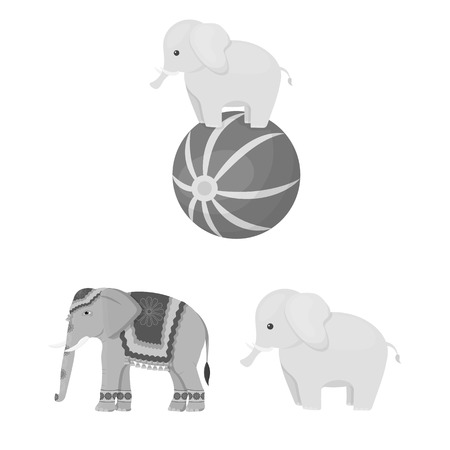 Isolated object of elephant and asian sign. Set of elephant and elephant vector icon for stock.