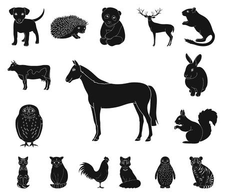 Icônes noires d'animaux réalistes dans la collection de jeu pour la conception. Animaux sauvages et domestiques vector illustration web stock symbole. Vecteurs