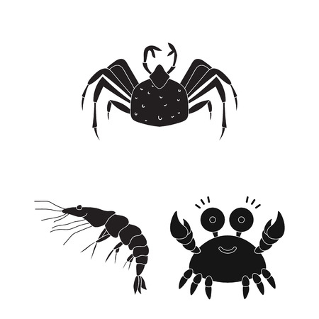 Vector illustration of crab and beach logo. Set of crab and sea stock vector illustration.
