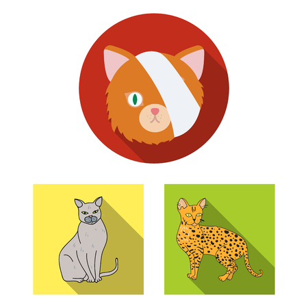 Vector design of pet and sphynx icon. Set of pet and fun stock symbol for web.