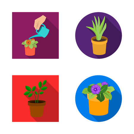 Isolated object of plant and flower symbol. Set of plant and pot stock symbol for web.