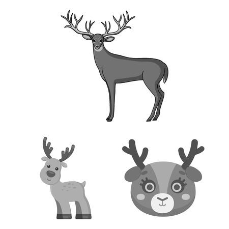 Objeto aislado de alce y signo de cabeza. Colección de icono de vector de alce y ciervo para stock.