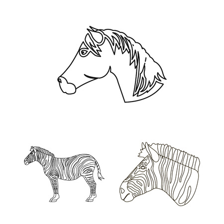 Vector design of trot and running logo. Collection of trot and clipart vector icon for stock. 版權商用圖片 - 127052199