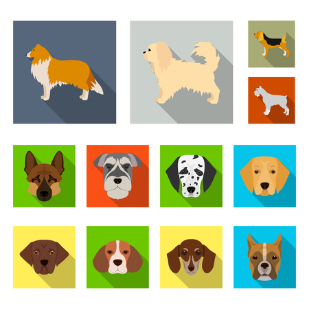 Vector design of cute and puppy icon. Collection of cute and animal vector icon for stock.