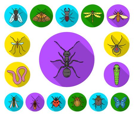 Verschiedene Arten der flachen Symbole der Insekten in der Satzsammlung für Design. Insektenarthropodenvektorsymbolvorrat-Netzillustration.