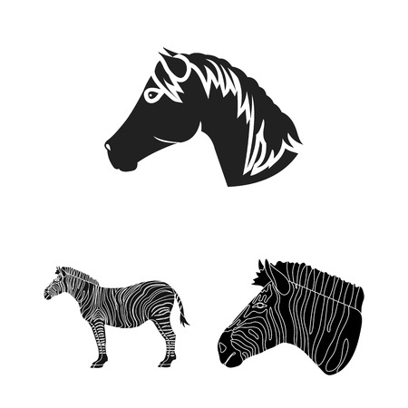 Vector design of trot and running symbol. Collection of trot and clipart vector icon for stock. 版權商用圖片 - 113603291