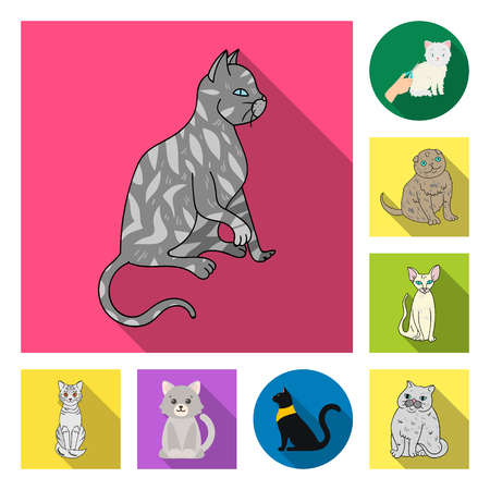 Isolated object of pet and sphynx icon. Set of pet and fun stock symbol for web.