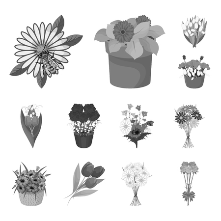 Vector design of spring and wreath icon. Collection of spring and blossom vector icon for stock.