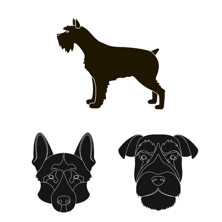 Vector design of cute and puppy symbol. Set of cute and animal stock symbol for web.