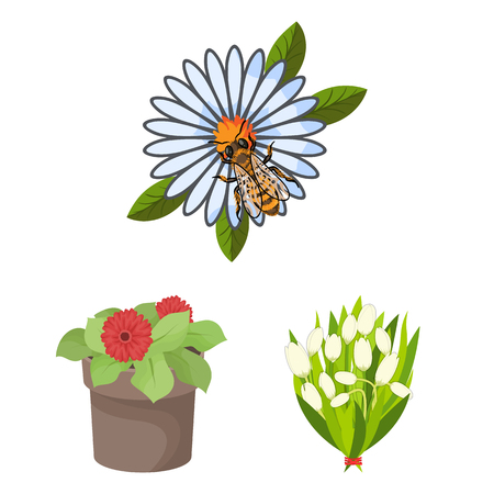 Isolated object of spring and wreath sign. Set of spring and blossom stock vector illustration.
