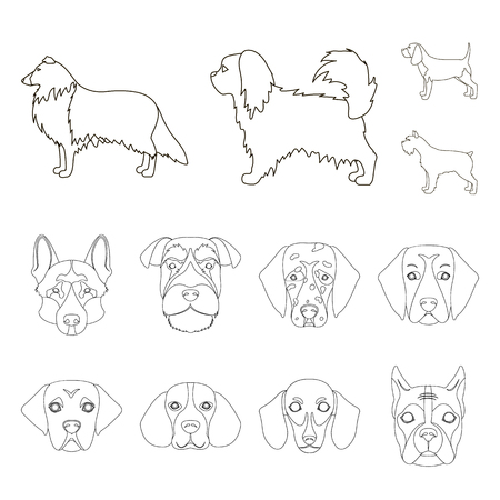 Vector design of cute and puppy logo. Set of cute and animal stock vector illustration.