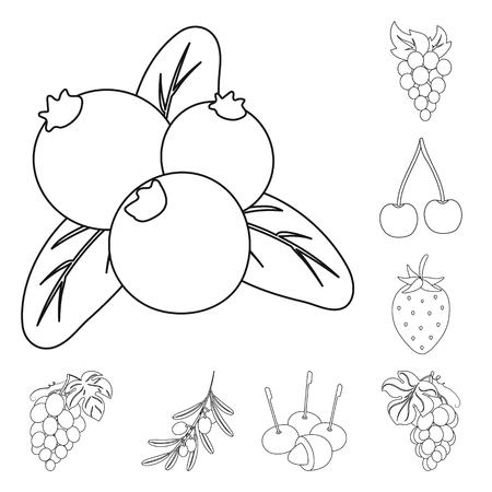 Vector design of berry and fruit sign. Set of berry and redberry  vector icon for stock.