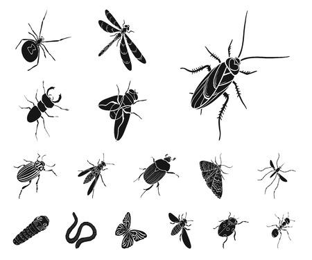 Verschiedene Arten von Insekten schwärzen Ikonen in der Satzsammlung für Design. Symbolvorrat-Netzillustration des Insektenarthropodenvektors isometrische.