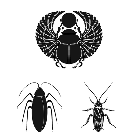 Vector illustration of insect. Set of insect and halloween stock vector illustration.