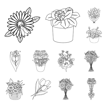 Isolated object of spring and wreath icon. Collection of spring and blossom vector icon for stock. Illustration