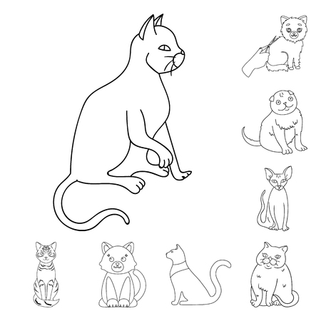 Vector illustration of pet and sphynx sign. Collection of pet and fun stock symbol for web. Ilustração
