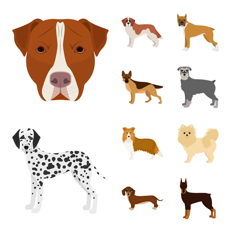 Isolated object of cute and puppy logo. Collection of cute and animal stock symbol for web. Illustration