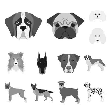 Vector illustration of cute and puppy logo. Collection of cute and animal vector icon for stock.