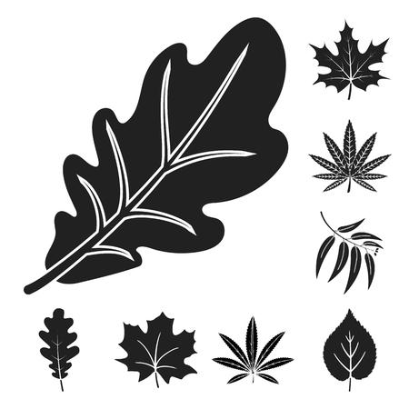 Ilustración de vector de icono vegano y orgánico. Colección de símbolo de stock vegano y fresco para web.
