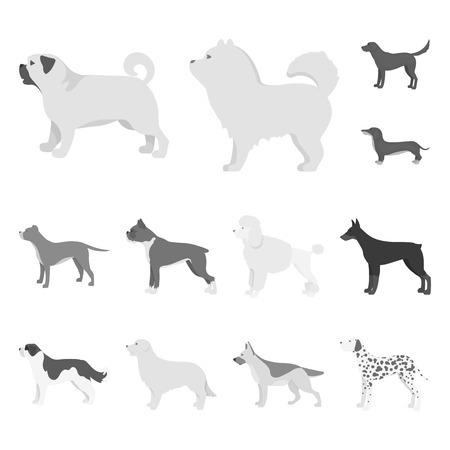 Vector illustration of cute and puppy logo. Set of cute and animal vector icon for stock.