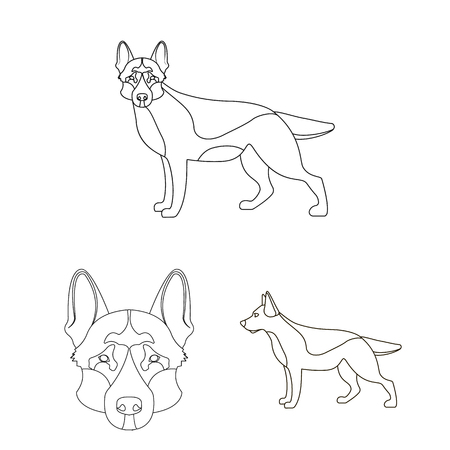 Vector illustration of  and sheepdog icon. Set of  and german stock symbol for web.