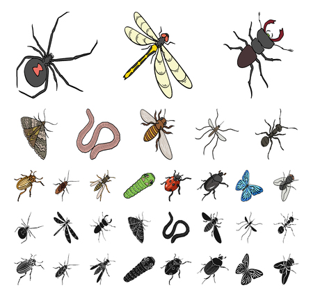 Different kinds of insects cartoon, black icons in set collection for design. Insect arthropod vector isometric symbol stock web illustration.