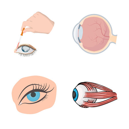 Isolated object of medical and eyeball symbol. Collection of medical and optical vector icon for stock. 스톡 콘텐츠 - 126733785