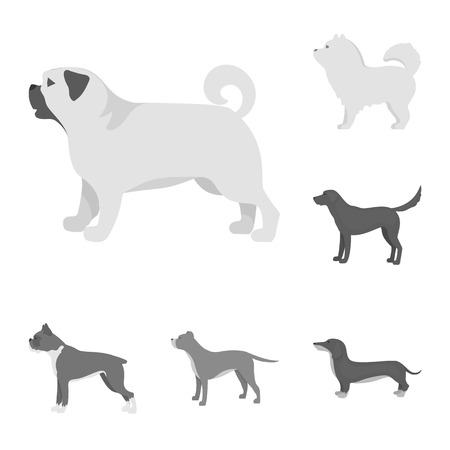 Isolated object of cute and puppy. Set of cute and animal vector icon for stock.