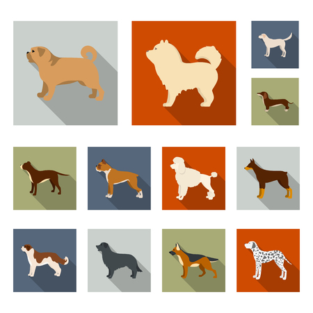Vector design of cute and puppy sign. Set of cute and animal stock symbol for web.