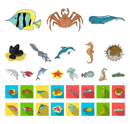 A variety of marine animals cartoon,flat icons in set collection for design. Fish and shellfish vector symbol stock web illustration.